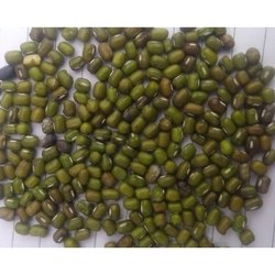 green moong suppliers