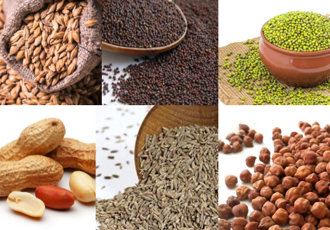 desi spices suppliers